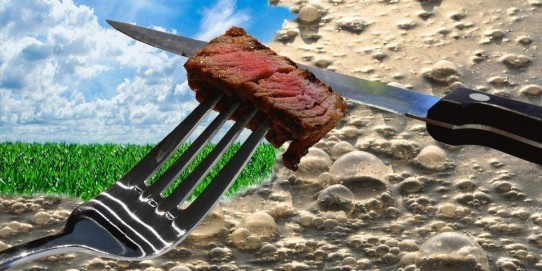 Be careful with attractive ads full of greenery. In reality, beef farming emits a lot of CO2 and dramatically pollutes water. Finally, our beef consumption pollutes more than your car!