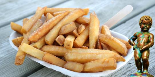 Vous pouvez faire des frites sans friteuse : c'est écologique car cela nécessite moins de pétrole et cause moins de pollution. En plus vous ferez des économise d'argent.