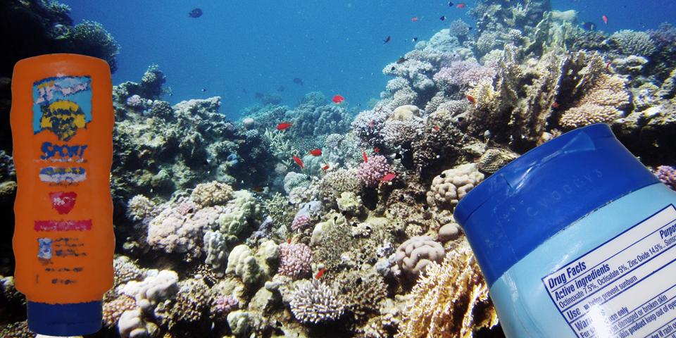 Vous mettez consciencieusement de la crème solaire chaque fois que vous vous exposez au soleil. Mais saviez-vous qu'elle participe à la destruction de l'environnement ? Gaz à effet de serre, plastique, pollution de l'eau et mort des coraux… Pourtant il y a des moyens de lutter contre les rayons UV toute en protégeant l'avenir sur la planète.