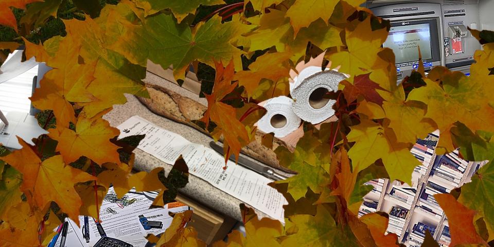 """Agissez concrètement pour protéger l'environnement et réduire vos émissions de gaz à effet de serre : rejoignez l'événement """"Cet automne on laisse tomber les feuilles"""""""