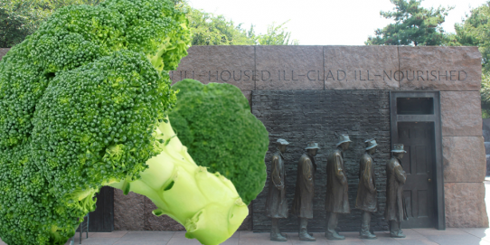 Chaque personne jette en moyenne 20 kg de nourriture par an. Cuisinez les pieds de brocolis, c'est dire stop au gaspi !