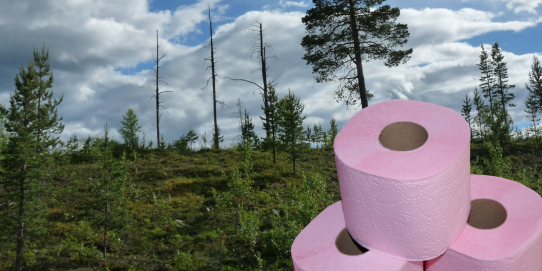Let's join the wipe movement to eradicate the pollution of toilet paper. As a replacement, you can buy reusable baby wipes. If it's safe for kids, it is for adults too!