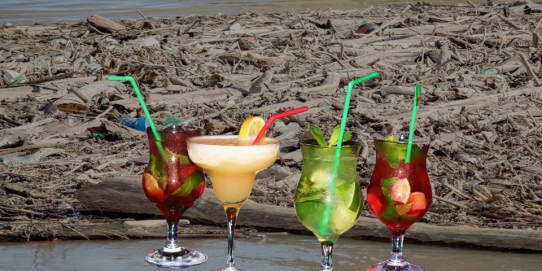 You can act to protect the environment just by drinking without a straw. So you save oil and electricity and help reduce water pollution and greenhouse gas emissions.